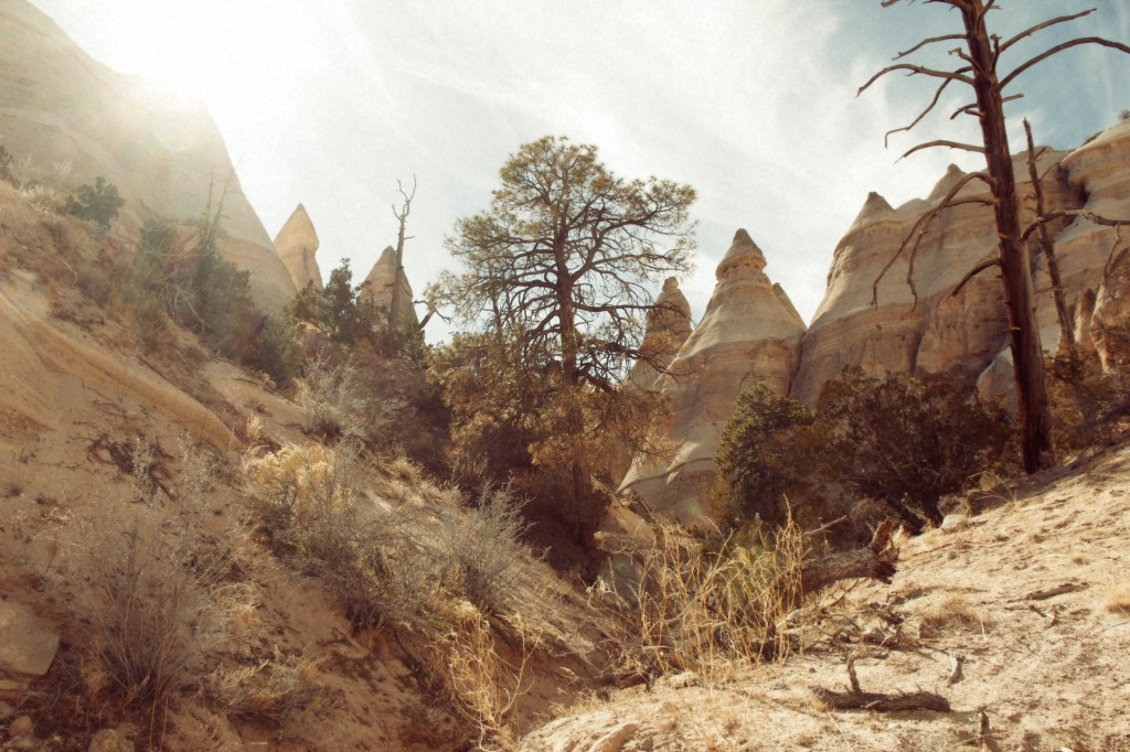 Tent Rocks New Mexico IV